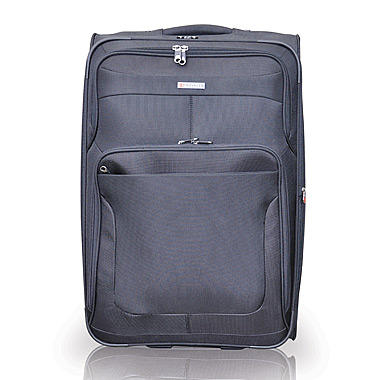 50cm Two Wheel Upright Platinum - cheap Bag + luggage