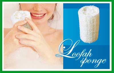 TT5767 loofah sponge - Bathroom + cleaning Collection