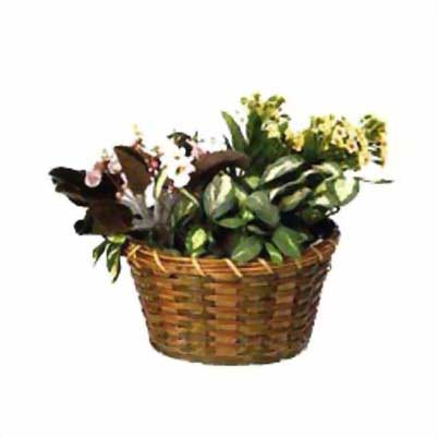 basket-016 - outdoor + garden products